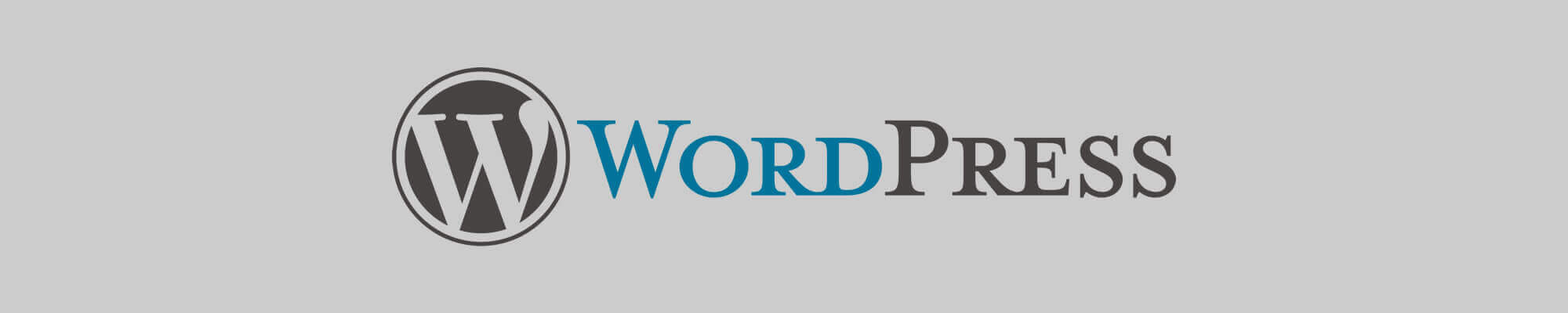 Agentur für maßgeschneiderte Lösungen mit WordPress